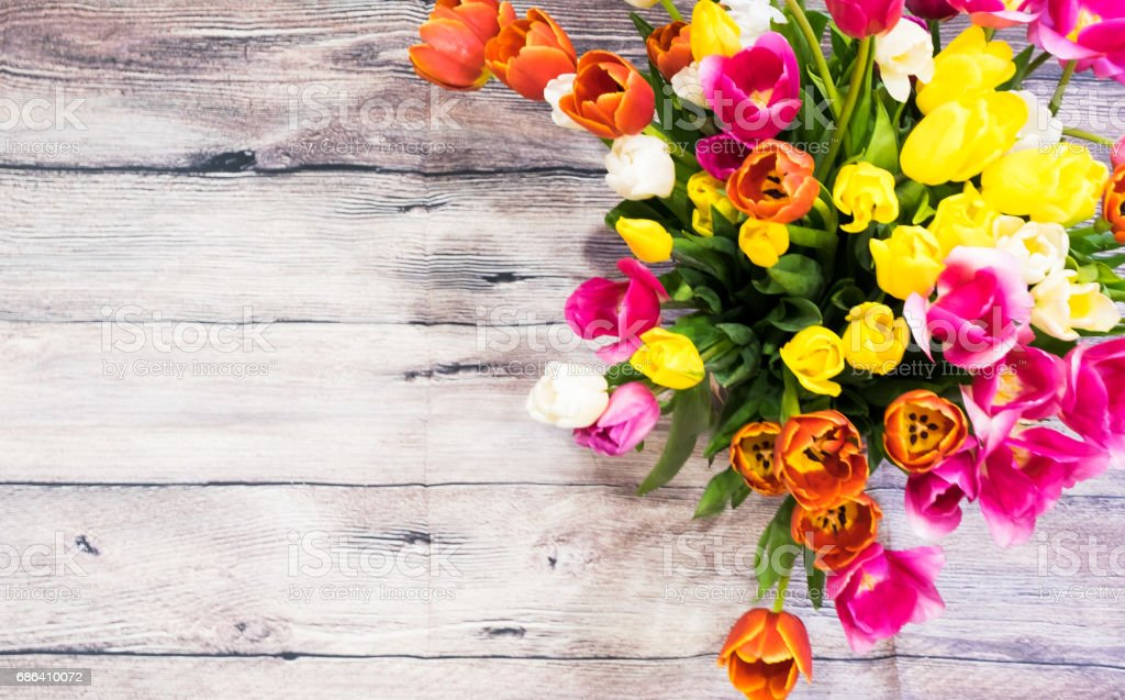 bouquet of many pink tulips yellow red and white layout 8 march stock photo