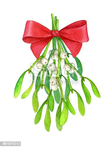 istock Bouquet of mistletoe. 881875212