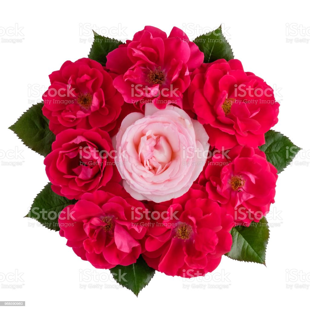 Bouquet Of One Pink And Many Red Roses Isolated On White Stock Photo ...