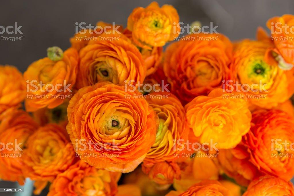 Bouquet Of Orange Ranunculus Stock Photo Download Image Now Istock