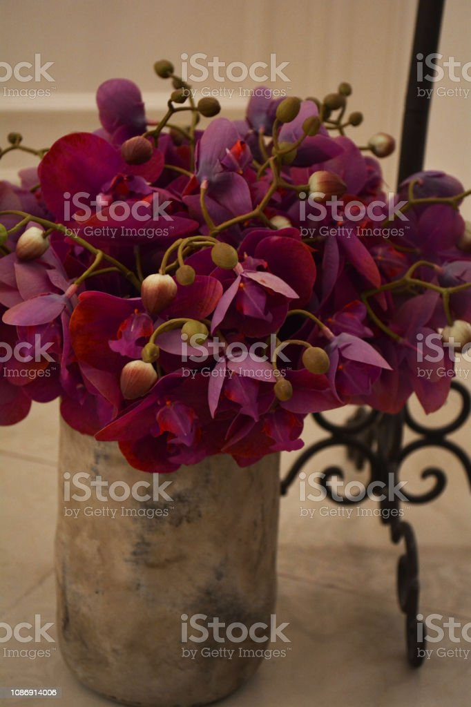 beautiful bouquet of purple orchids in a clay vase