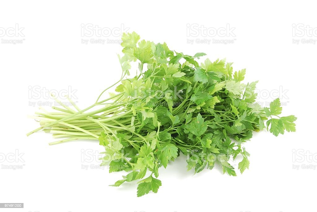 Bouquet of parsley on white royalty-free stock photo
