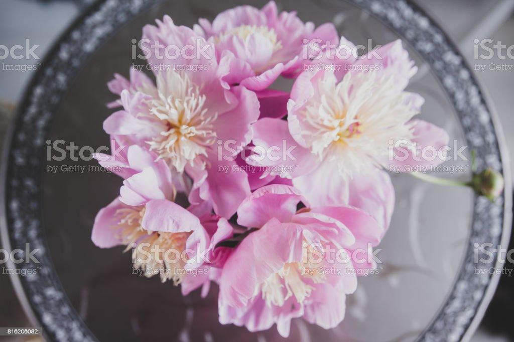 Bouquet Von Pfingstrosen Foto In Sanften Farben Guten Morgen