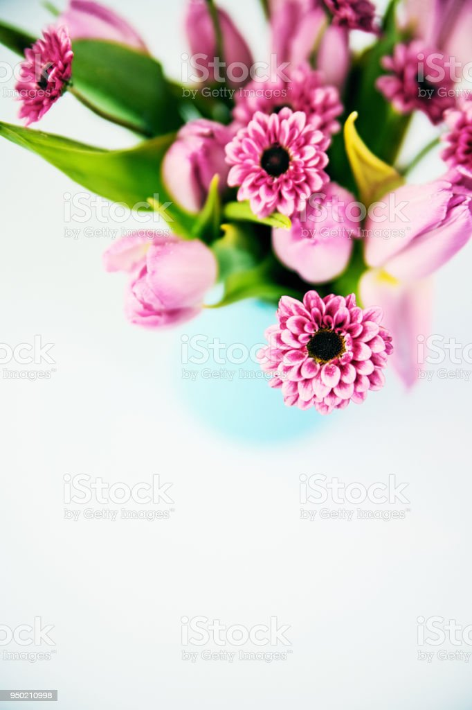 Bouquet of pink flowers on blue background stock photo