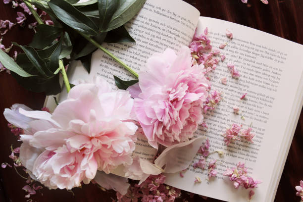 Bouquet of pink peonies flat lay picture id992041764?b=1&k=6&m=992041764&s=612x612&w=0&h=v rvw641crrsmviktwlezxyyxkexrzmb13nxmtvlb3c=