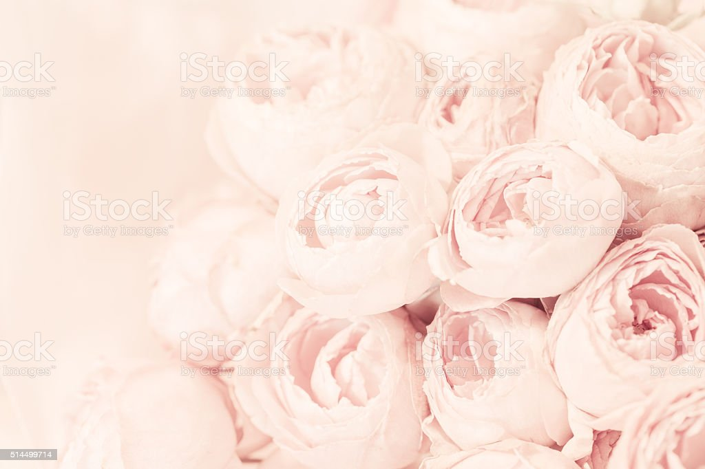 Bouquet of pink peony roses