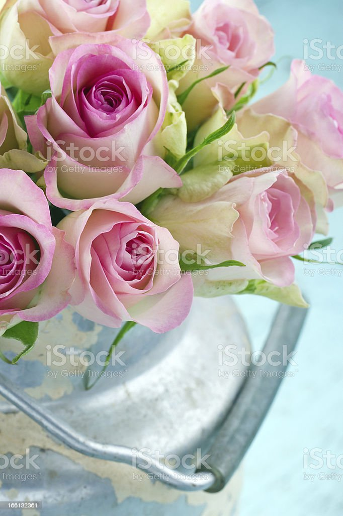 Bouquet of pink roses in a rustic bucket royalty-free stock photo