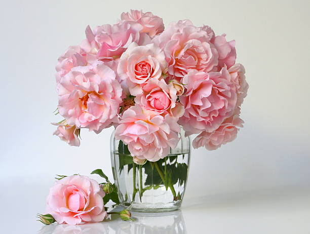 bouquet of pink roses in a  vase. romantic floral decoration. - vase stock pictures, royalty-free photos & images