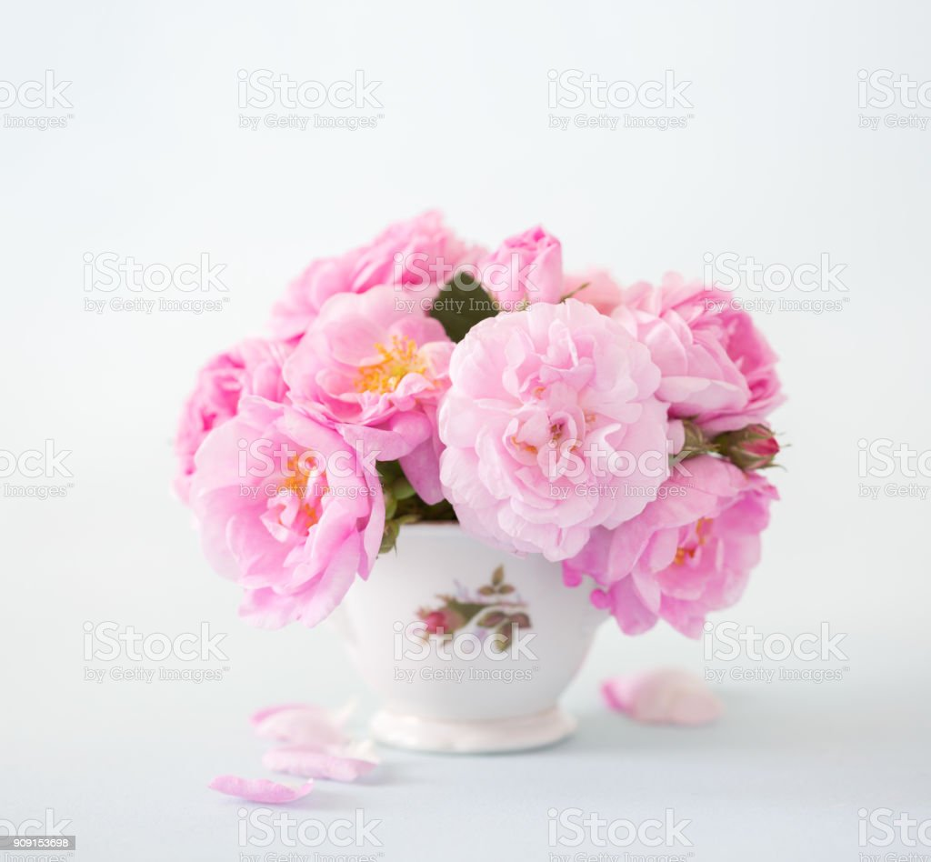 Bouquet of  pink roses on light grey background. stock photo
