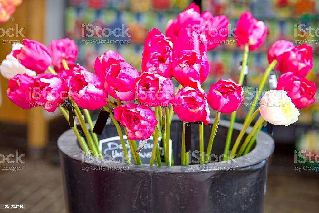 Bouquet of pink tulips at Bloemenmarkt Market, Amsterdam Lizenzfreies stock-foto