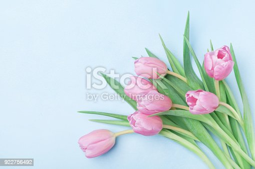 istock Bouquet of pink tulips for March 8, International Womans or Mothers day. Beautiful spring card. 922756492