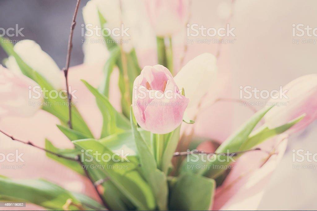 bouquet of pink tulips gentle tones stock photo