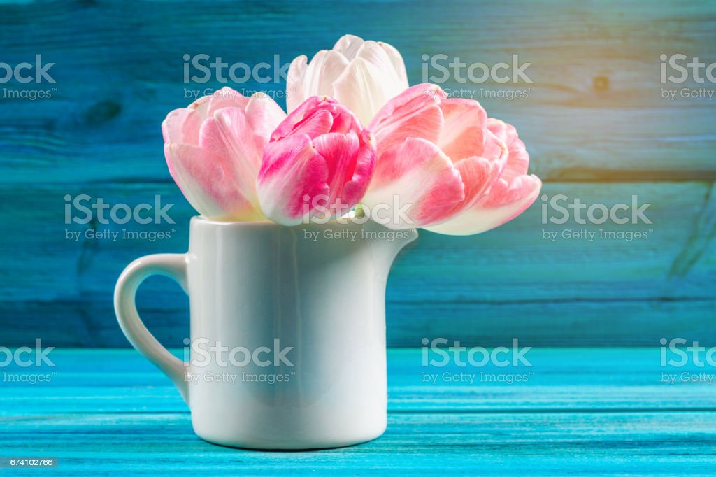 Bouquet of pink tulips on blue wooden background.. Happy mother's day. royalty-free stock photo