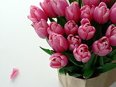 Bouquet of pink tulips wrapped in craft paper on the white table. Pink tulips in a paper bag. Background for wedding greeting card banner, mother's day card, women's day, birthday.