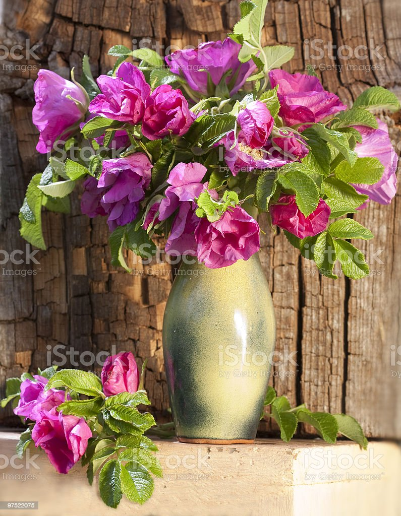 bouquet of pink wild royalty-free stock photo