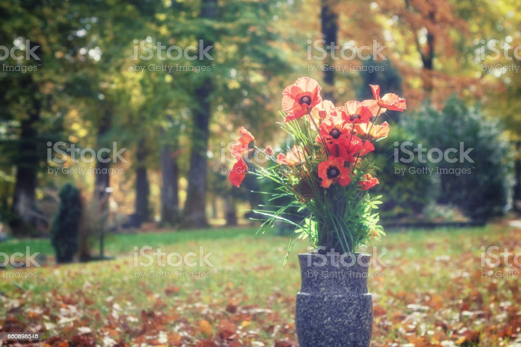 Bouquet of poppy flowers in a sunny autumn cemetery stock photo