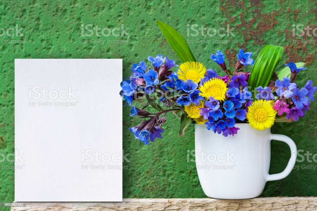 Bouquet of primroses blue lungwort in white enameled metal mug on table and vintage background, grunge with white paper sheet for text, vintage, copy space, zbiór zdjęć royalty-free