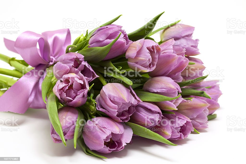 bouquet of purple tulips stock photo