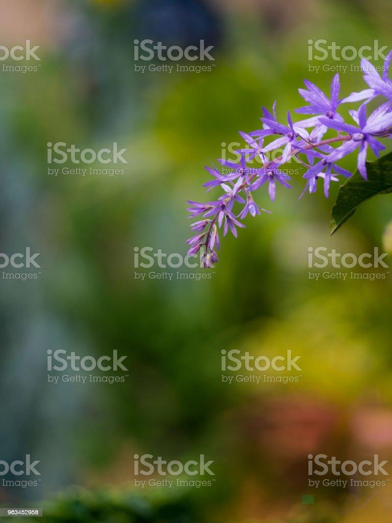 Mor çelenk çiçek çiçek buketi - Royalty-free Araç Römorkü Stok görsel