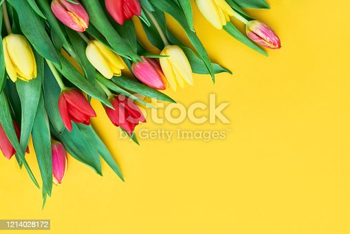 Bouquet of red and yellow tulips on yellow background. Mothers day, Valentines Day, Birthday celebration concept. Copy space for text, top view