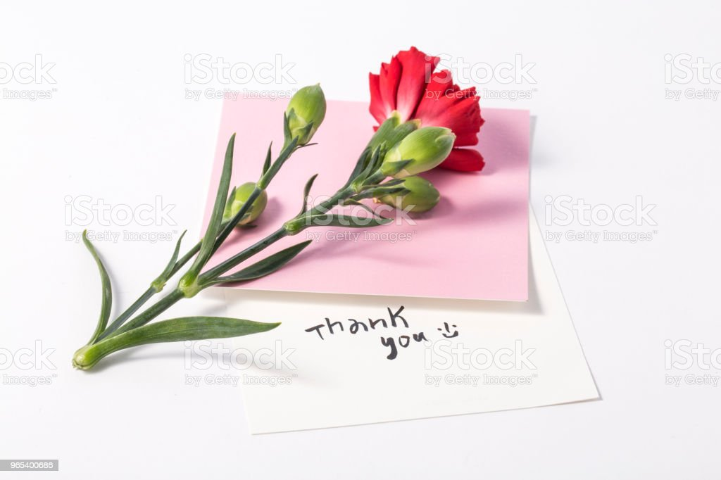 Bouquet of red carnations and giftbox or message card royalty-free stock photo