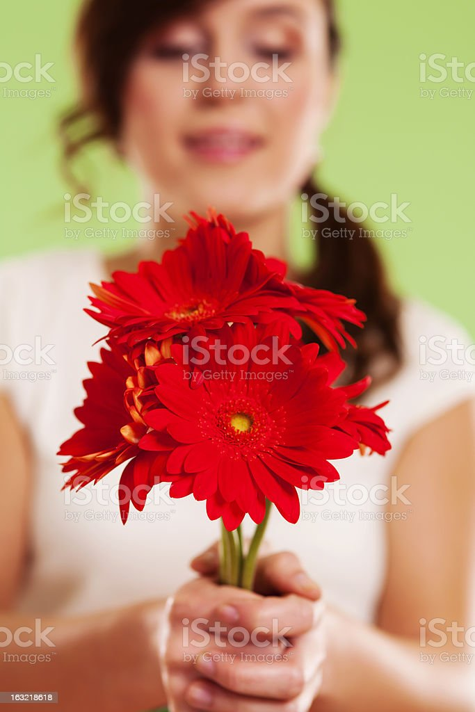Bouquet of red gerbera royalty-free stock photo