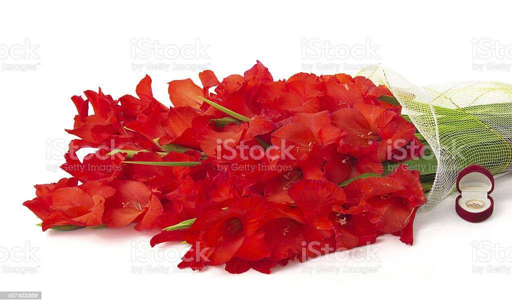 Bouquet of red gladiolus, wedding ring in box royalty-free stock photo