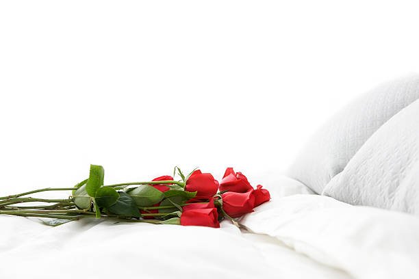 Bouquet of Red Romantic Roses on White Bed, Copy Space stock photo