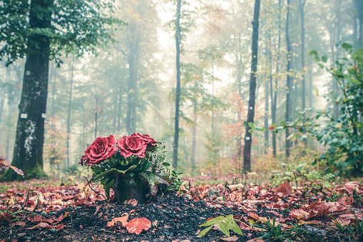 Bouquet of red roses in a forest cemetery on a foggy autumn day
