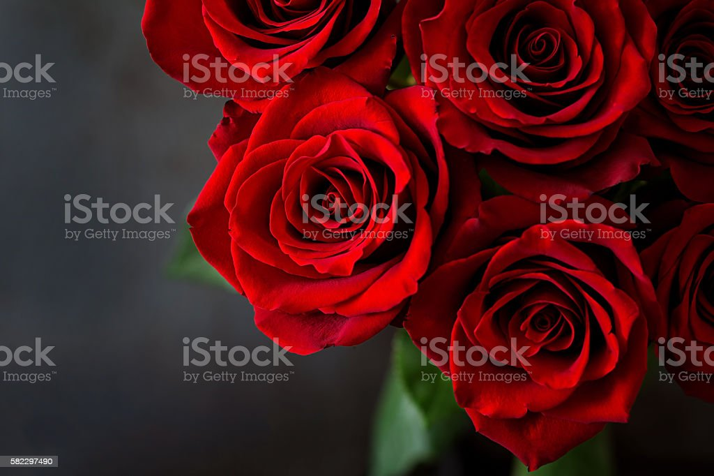 Bouquet of red roses on a black background. Top view stock photo
