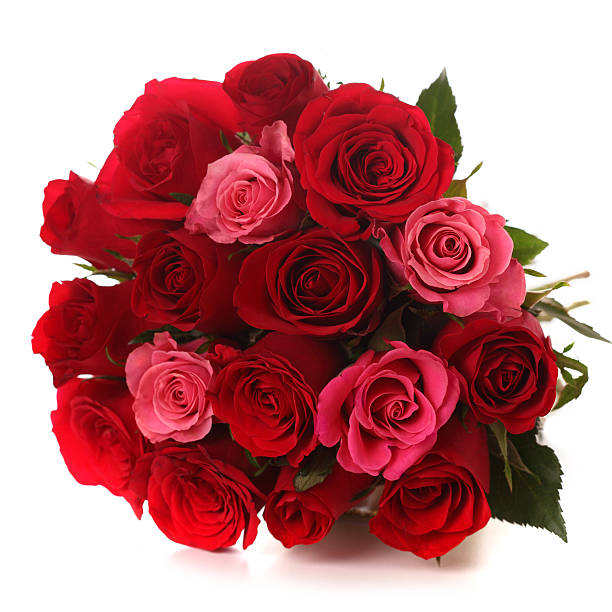 Bouquet of red roses on white isolated background stock photo