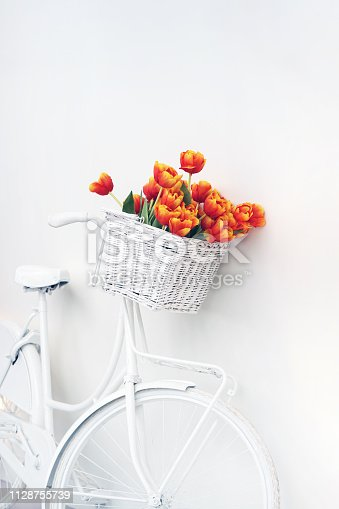 White bicycle with red tulips floral basket isolated on white background. Retro old-fashioned style. Card for womens day, valentines day.