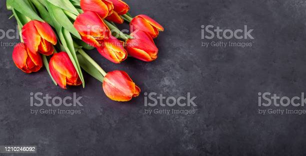 Bouquet of red tulips on a dark stone table spring background copy picture id1210246092?b=1&k=6&m=1210246092&s=612x612&h=tiuct0bn1jtz44zxs6uykpiruenv0roy0btbadrhd g=