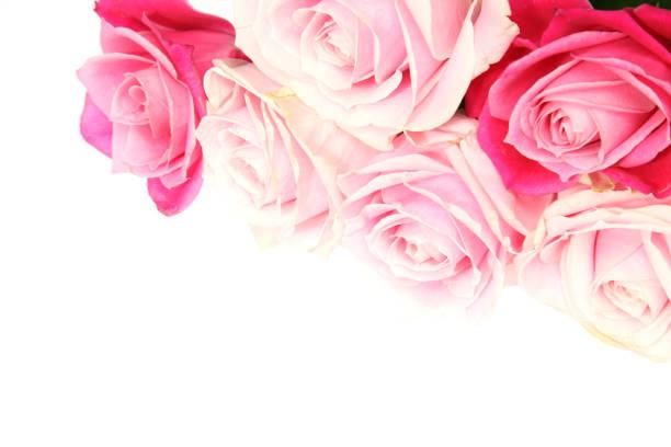 Bouquet of rose picture id687221622?b=1&k=6&m=687221622&s=612x612&w=0&h=ifpgrnr7q5fsg 20fzyuzdr1cec3hj5cc6lyz28eruu=