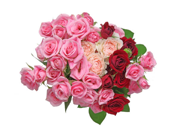 Bouquet of rose picture id856035930?b=1&k=6&m=856035930&s=612x612&w=0&h=atpamez5h03que9i4v4kz  jyk 3 fyvpruuhfkzewk=