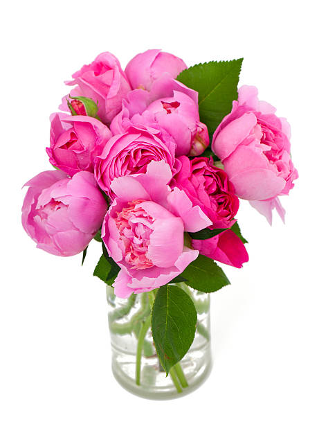 Bouquet of roses and peonies picture id495279437?b=1&k=6&m=495279437&s=612x612&w=0&h=ufj9bbsoborjpfhxycgq pu72tjrfwstvbiyncdnjng=