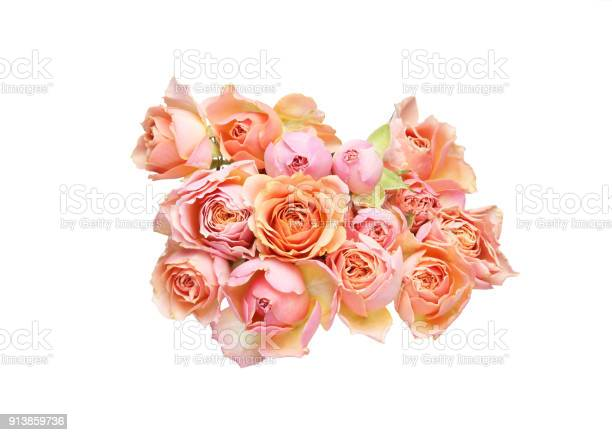 Bouquet of roses in a white background picture id913859736?b=1&k=6&m=913859736&s=612x612&h=31giukd1ihjyml9g1c3mamprau9rmt5qwtlbzdm3w7g=
