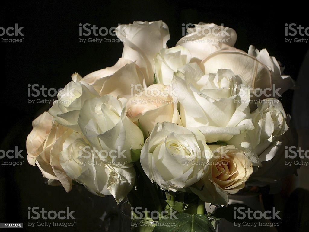 bouquet of roses on black background stock photo