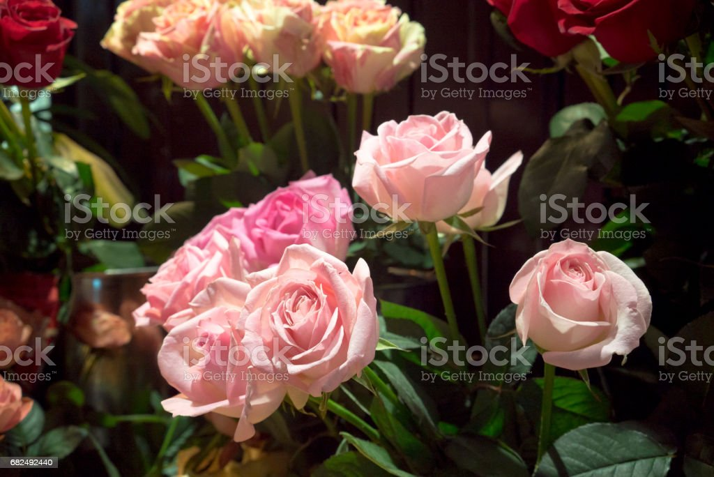 Bouquet of roses foto de stock royalty-free