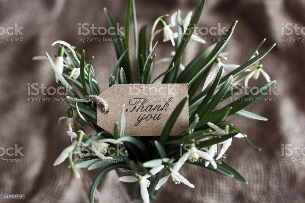 bouquet of spring anemones with a 'thank you' card stock photo