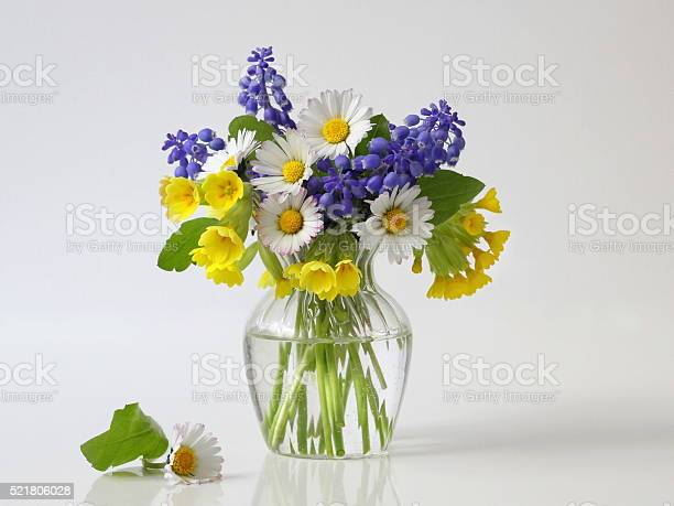 Photo of Bouquet of spring colorful flowers in vase. Floral still life.