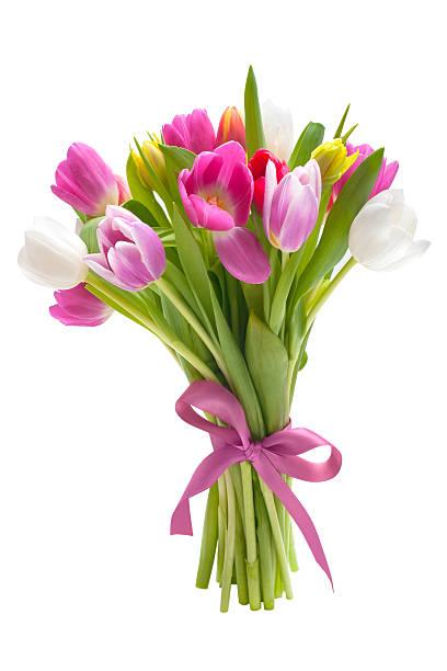 Bouquet von Frühling Tulpen Blumen – Foto