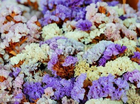 Bouquet, Dead, Flower, Plant, Springtime