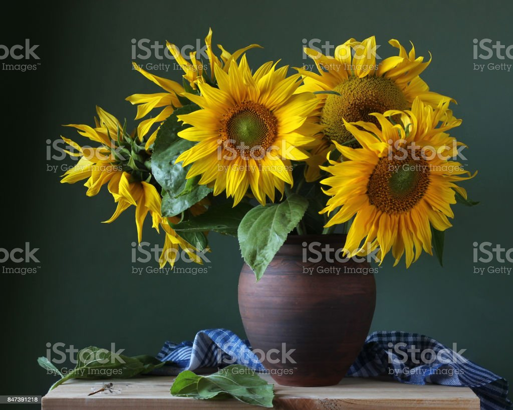 Bouquet Of Sunflowers In A Clay Jug Royalty Free Stock Photo
