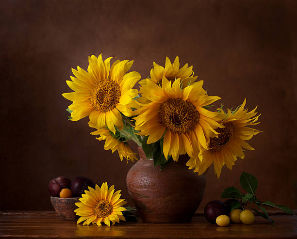 bouquet of sunflowers in old clay jug. - nature morte photos et images de collection