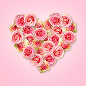 Bouquet of tea roses in the shape of a heart on a pastel pink background. Valentine's Day. Love concept. The picture in the style of minimalism.