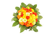 Bouquet of the colorful chrysanthemums isolated