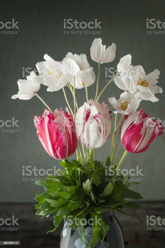 Bouquet of tulips and white anemones flowers on gray background stock photo