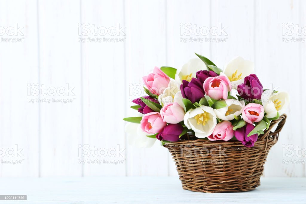 Bouquet of tulips on a wall paneling background stock photo