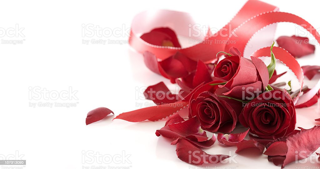 Bouquet of Valentine Roses and Ribbon on White, Copy Space royalty-free stock photo